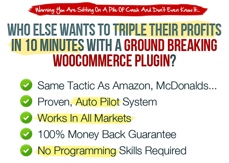 Who Else Wants To Triple Their Profits in 10 Minutes With a Ground Breaking WooCommerce Plugin?